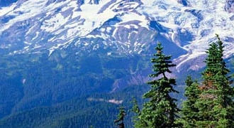 4-Day Seattle, Mt. Rainier, Olympic National Park Tour from Seattle with Airport Transfer