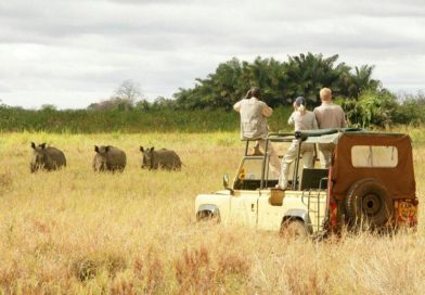 5 THINGS YOU CAN NEVER MISS IN AFRICAN SAFARI