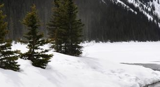 Canadian Rockies Tours from Calgary